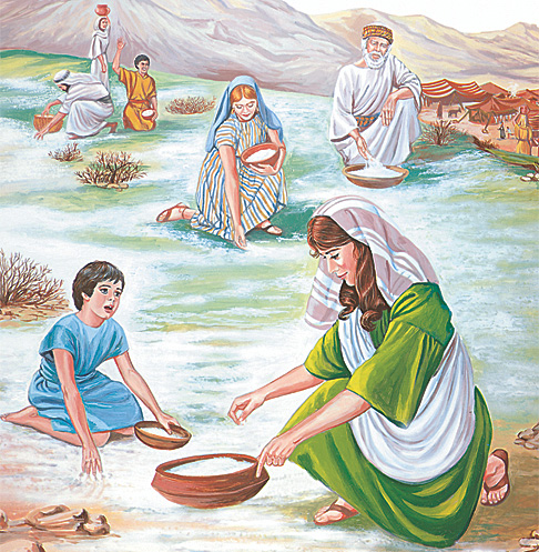 My Book of Bible Stories Story 34 illustration